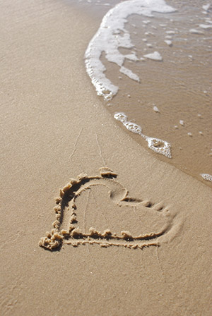 openphotonet_beach2
